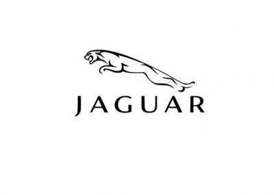 Jaguar Stencil
